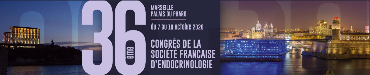 Bannière Congrès SFE 2020